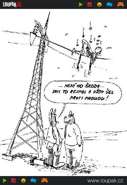 Obrazky Kreslene Vtipy Ccclxvi Videa Loupak Cz