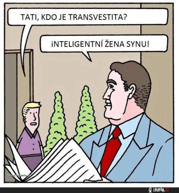 posobie-dlya-transvestita