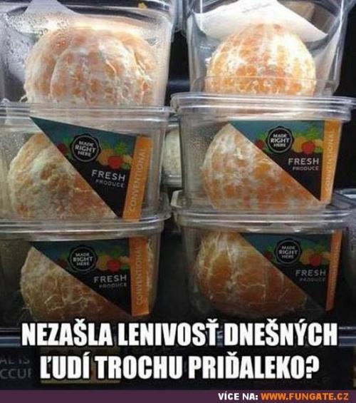 Lenivost