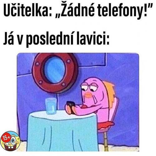 Žádné telefony