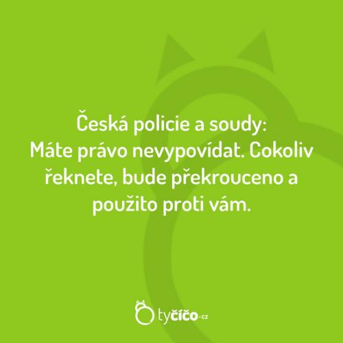 Tak funguje česká policie