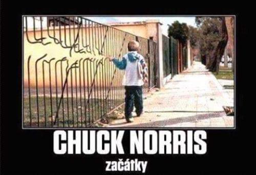 Chuck Norris začátky