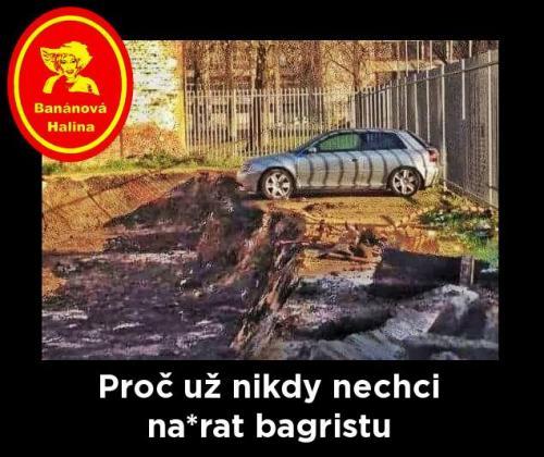 Bagrista