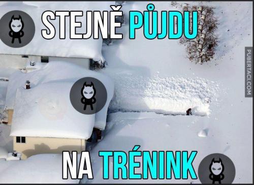 Trénink)