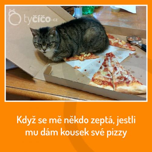 KOusek