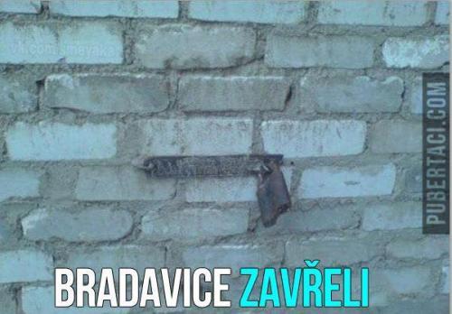 Bradavice