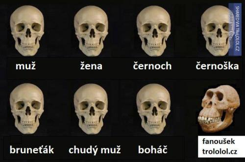 Boháč