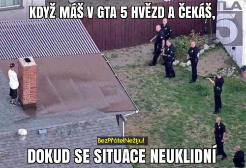 Policie