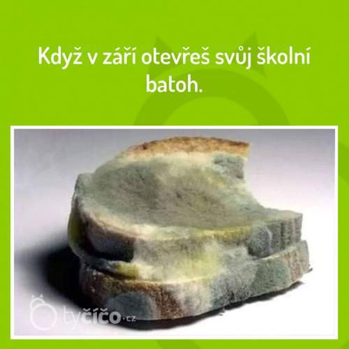 Baťoh