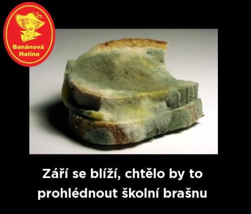 Školní brašna