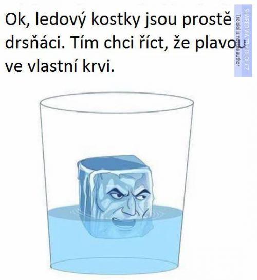 Ledové kostkty