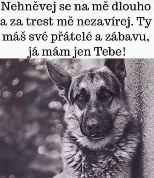 Trest)