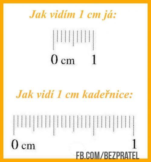 Centimetr