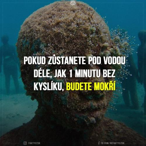 Mokro