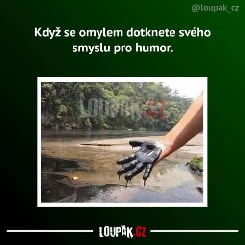 Smysl pro humor