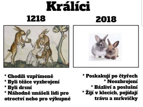 Králici v roce 1218 vs. 2018