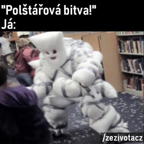 Bitva