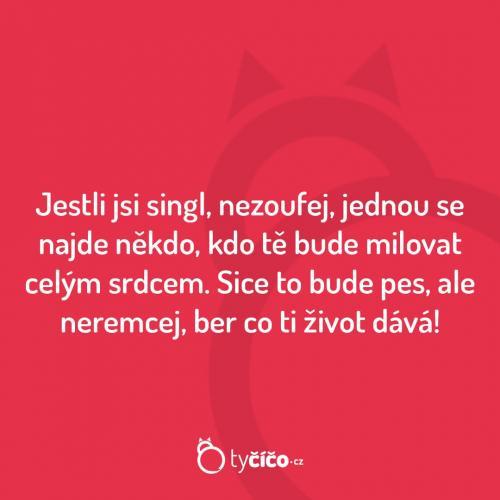 Singl