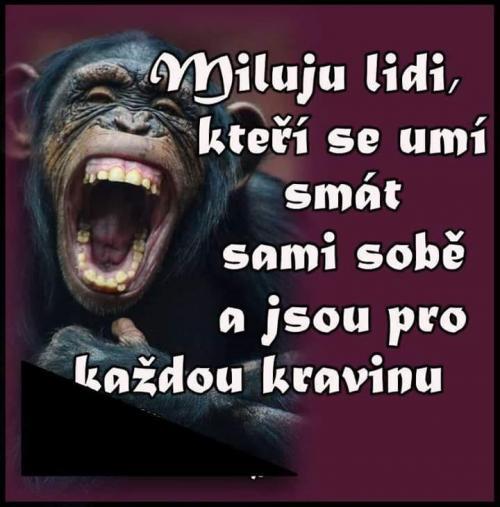 Smích