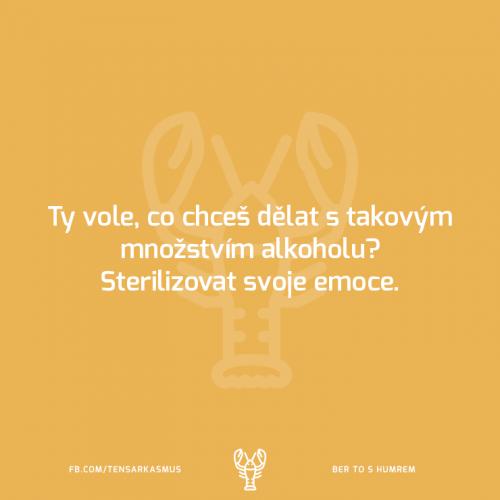 Emoce a alkohol
