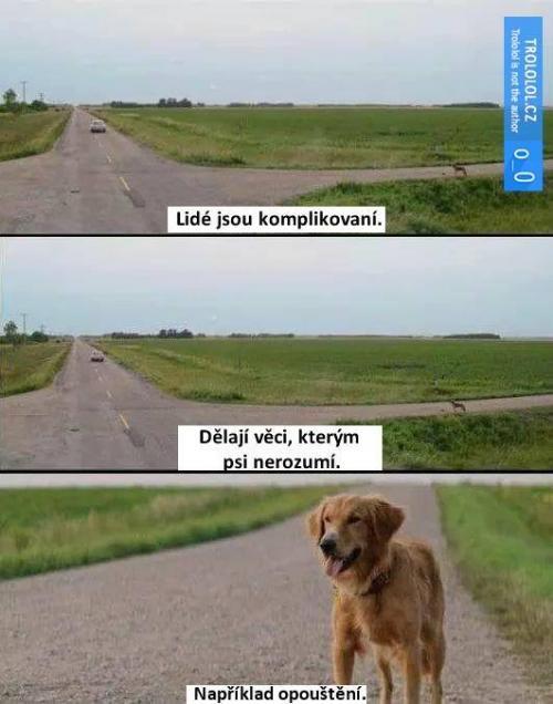 Když lidé opouštějí psy