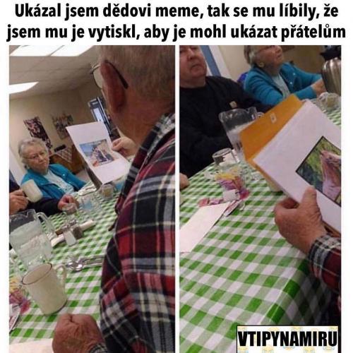 Tištěné meme