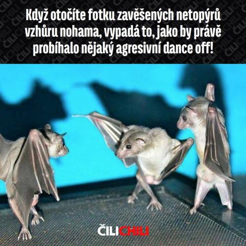 Agresivní dance