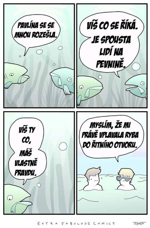 V moři je spousta ryb!