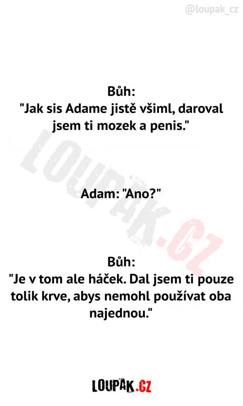 Bůh a Adam