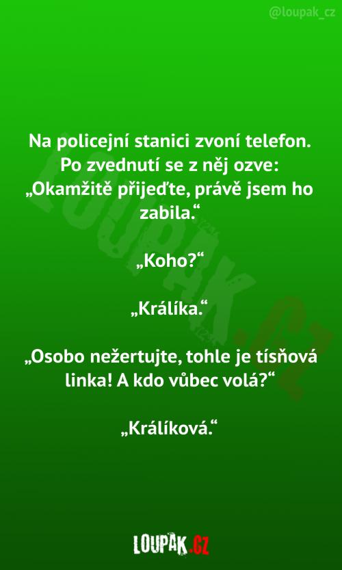 Na policejní stanici zvoní telefon