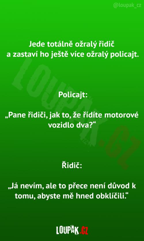 Ožralý řidič vs. ožralý policajt