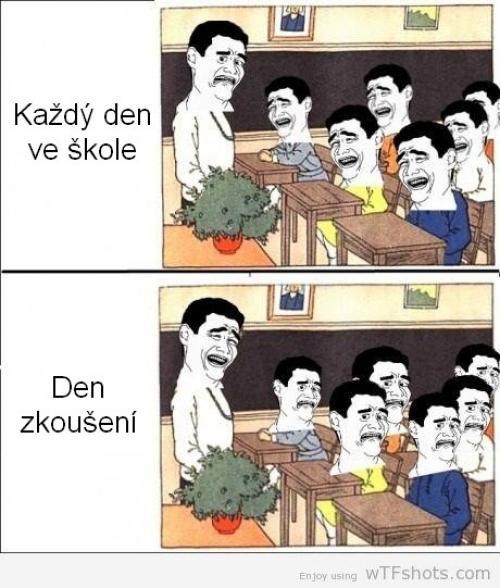 Škola vs. škola