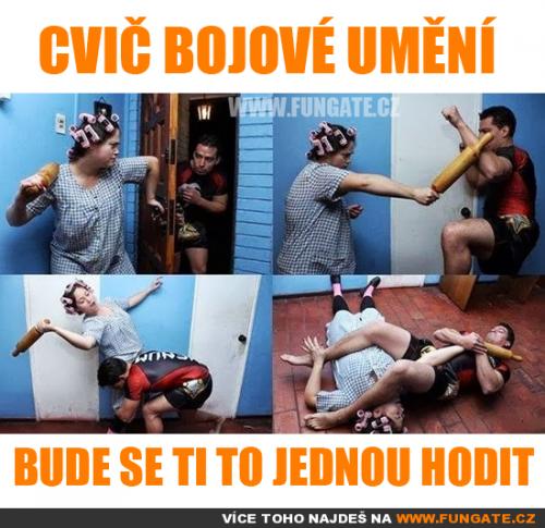 Cvič bojové umění