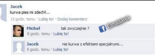 Poláci se baví