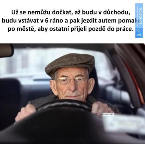 Důchodce