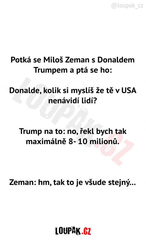 Zeman a Trump