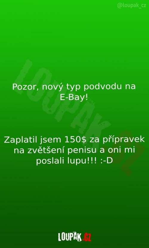 Podvody na E-Bay