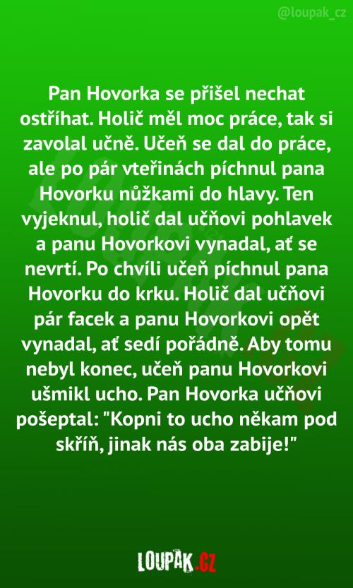 Pan Hovorka