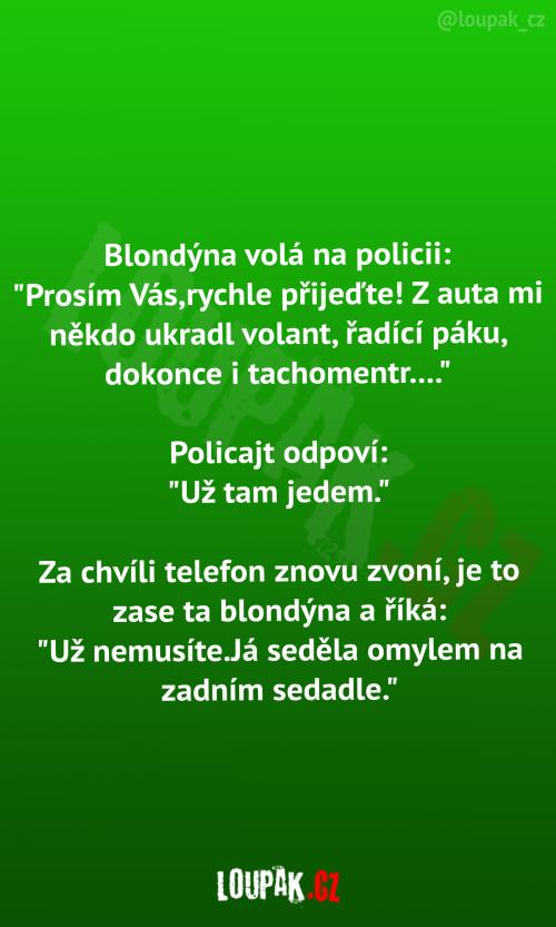 Blondýna a policie