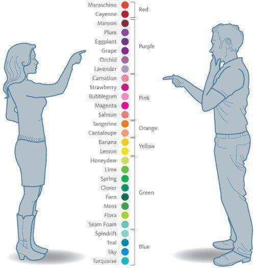 Jak vidí barvy muži a jak ženy
