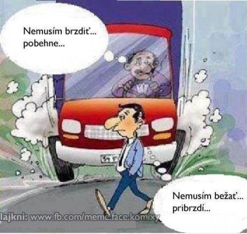 řidič a chodec