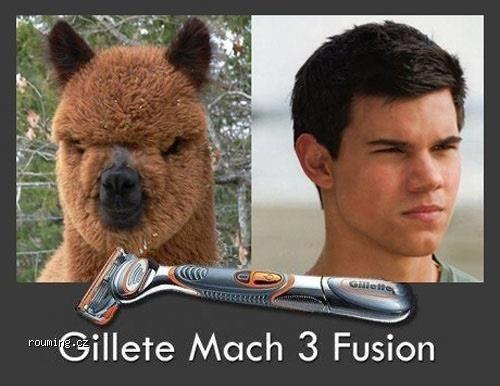 GilleteMach3Fusion