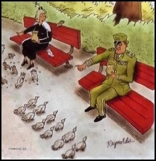 Disciplína