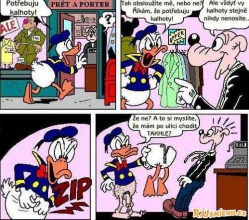 Kačer Donald