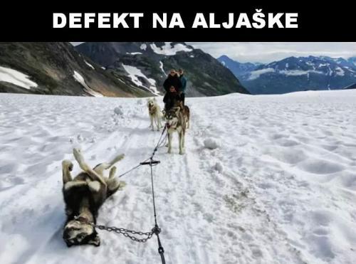 Defekt na Aljašce