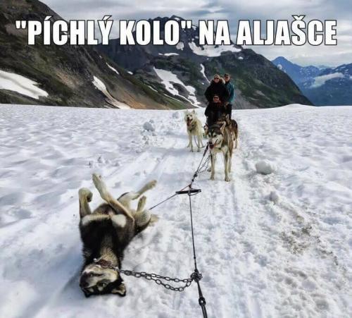 Aljaška :D
