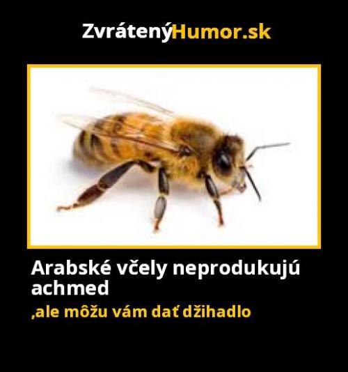 Arabské včely