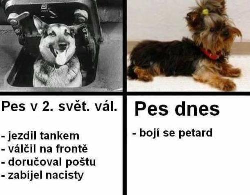 Porovnání