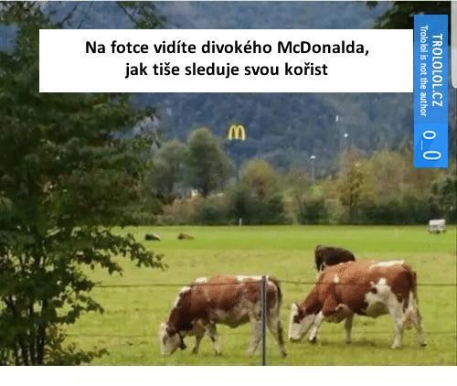 McDonald a jeho kořist