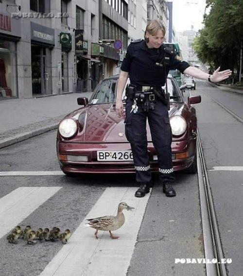 Pozor přechod pro chodce